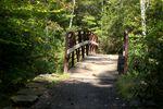 Nc-arboretum-092809 024