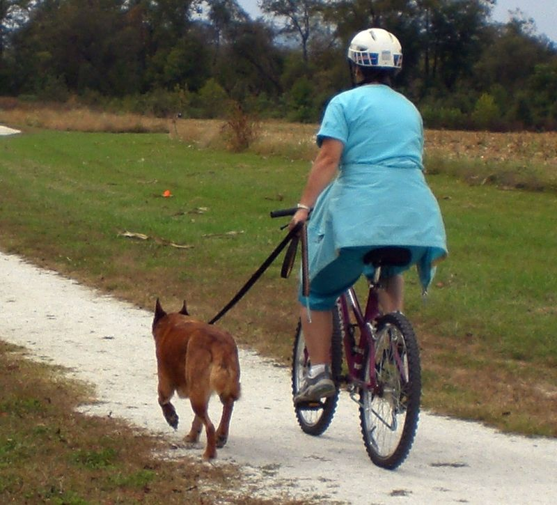 Biking with your dog-2