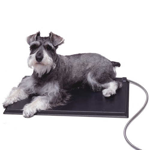 Lectro kennel heated pad