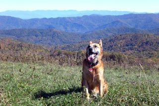 Max-patch-102109 041