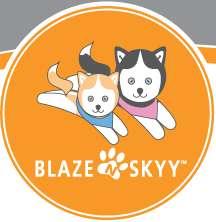 Blazenskyy
