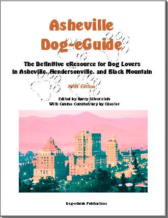 Dogeguidecover