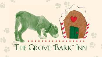 Grovebarkinn