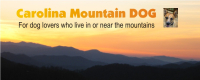 Carolina Mountain Dog-masthead