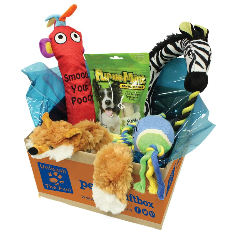 Pet-gift-box_lgdog_sideview_EDITED